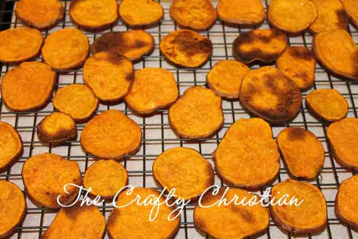 Seasoned Sweet Potato Chips
