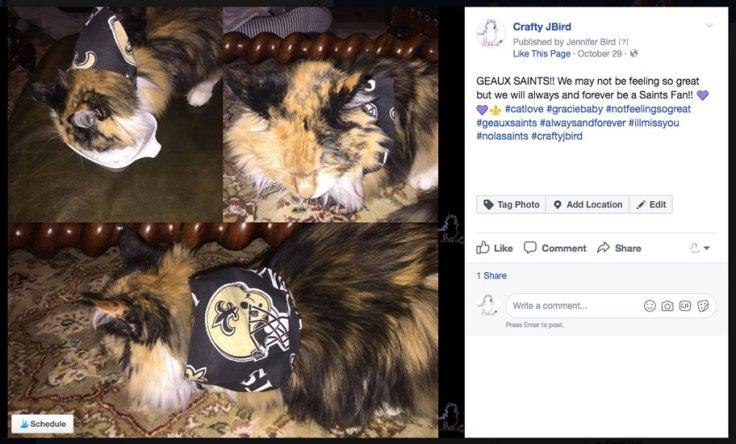 Gracie Baby Update -- Visit CraftyJBird.com for more info...