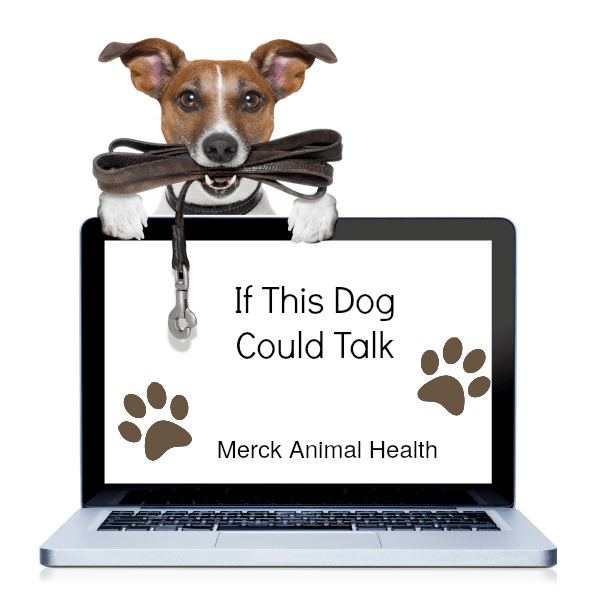 Merck Animal Health - Dog Flu