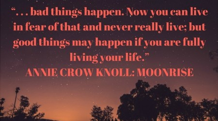 Annie Crow Knoll: Moonrise by Gail Priest is now available