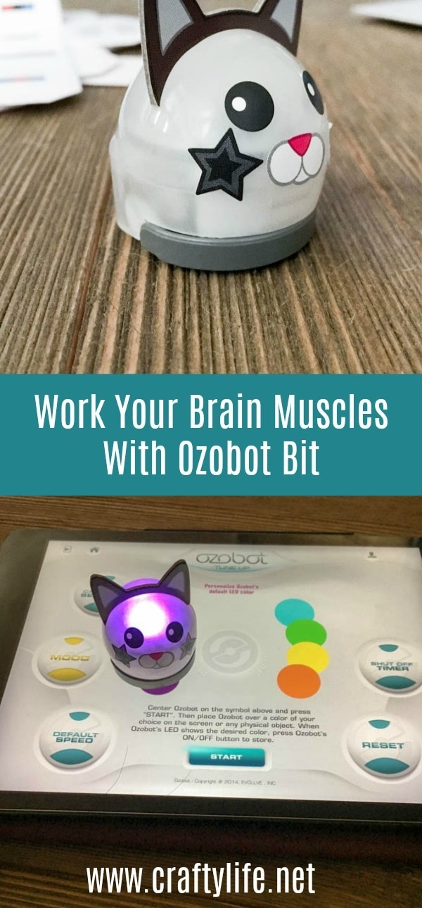 Work your brain muscles with Ozobot Bit! Pocket-sized bots. Infinite Possibilities. #ad