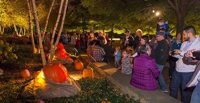 halloween events in chicago  - 1,000 jack-0-lanterns