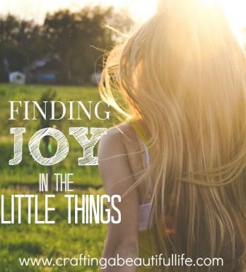 finding joy multi