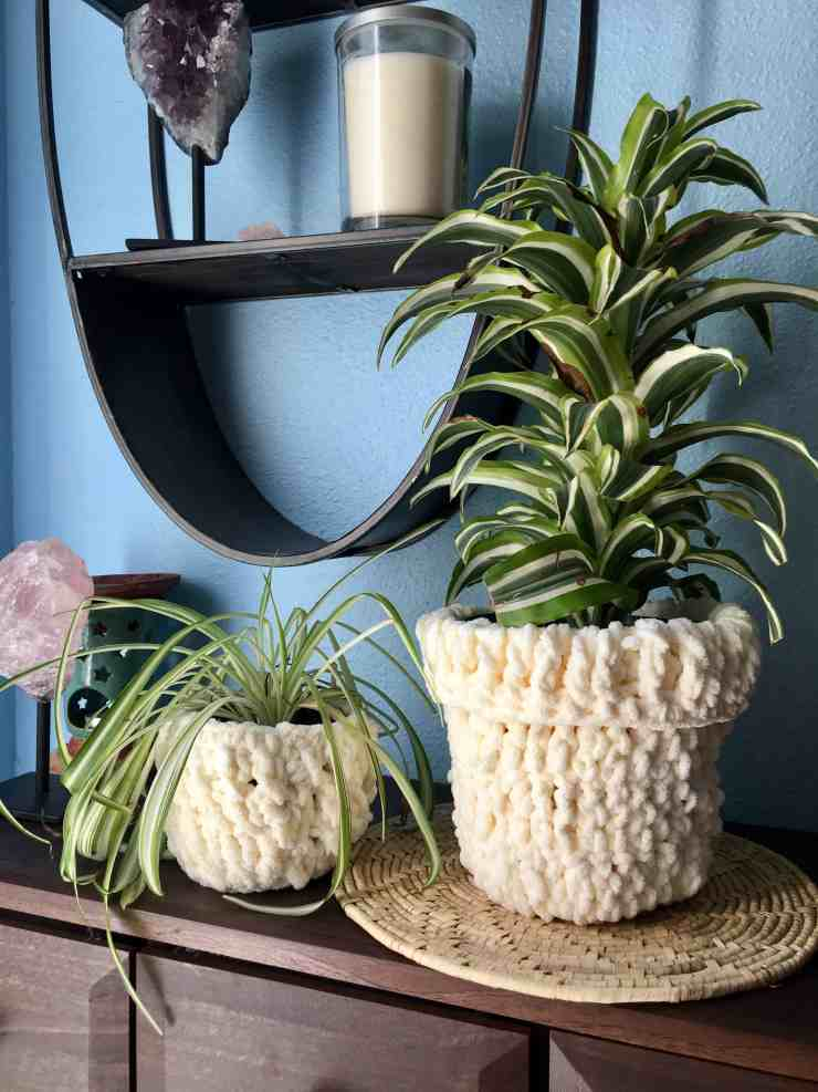 Crochet Plant Cozies for Fall