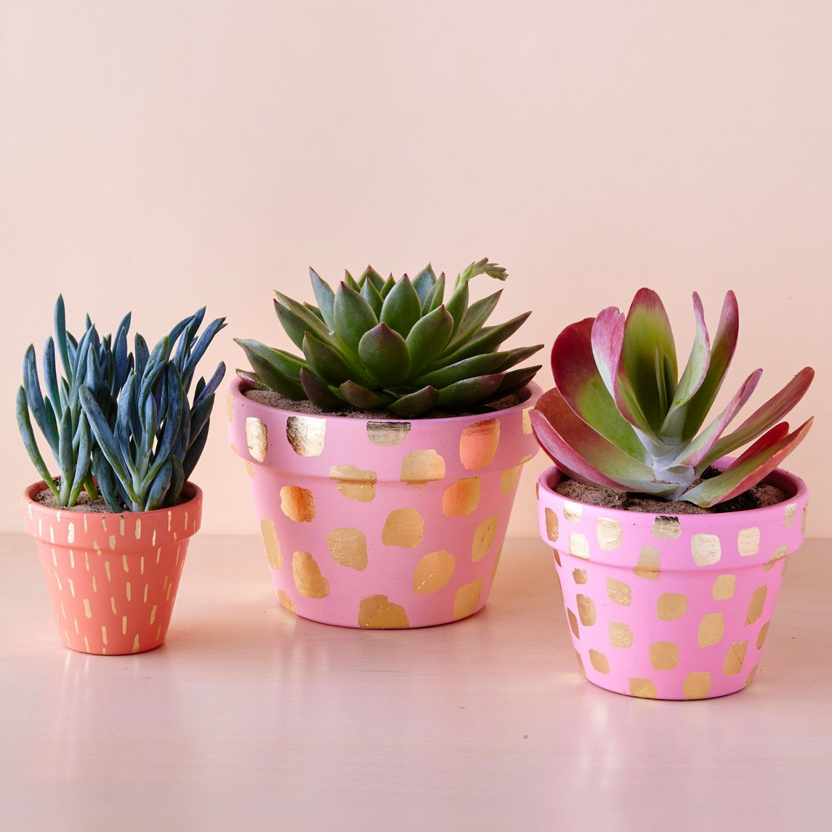 Real Simple painted flower pots, photo