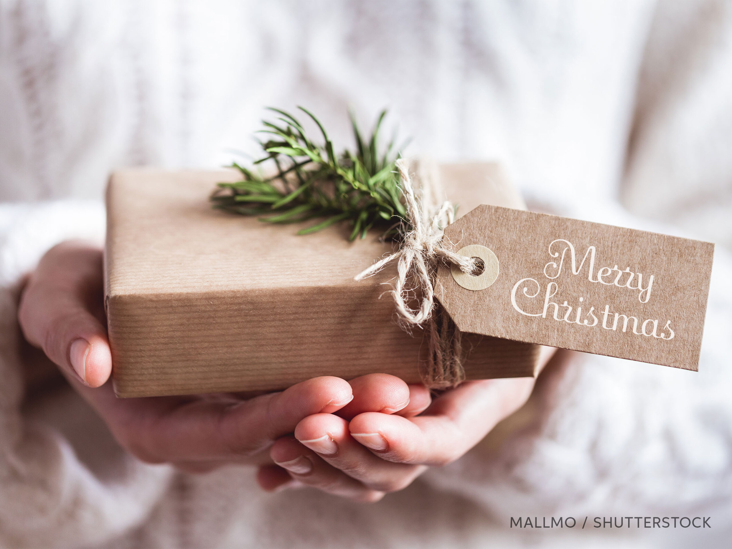 Hands holding a Christmas gift, photo