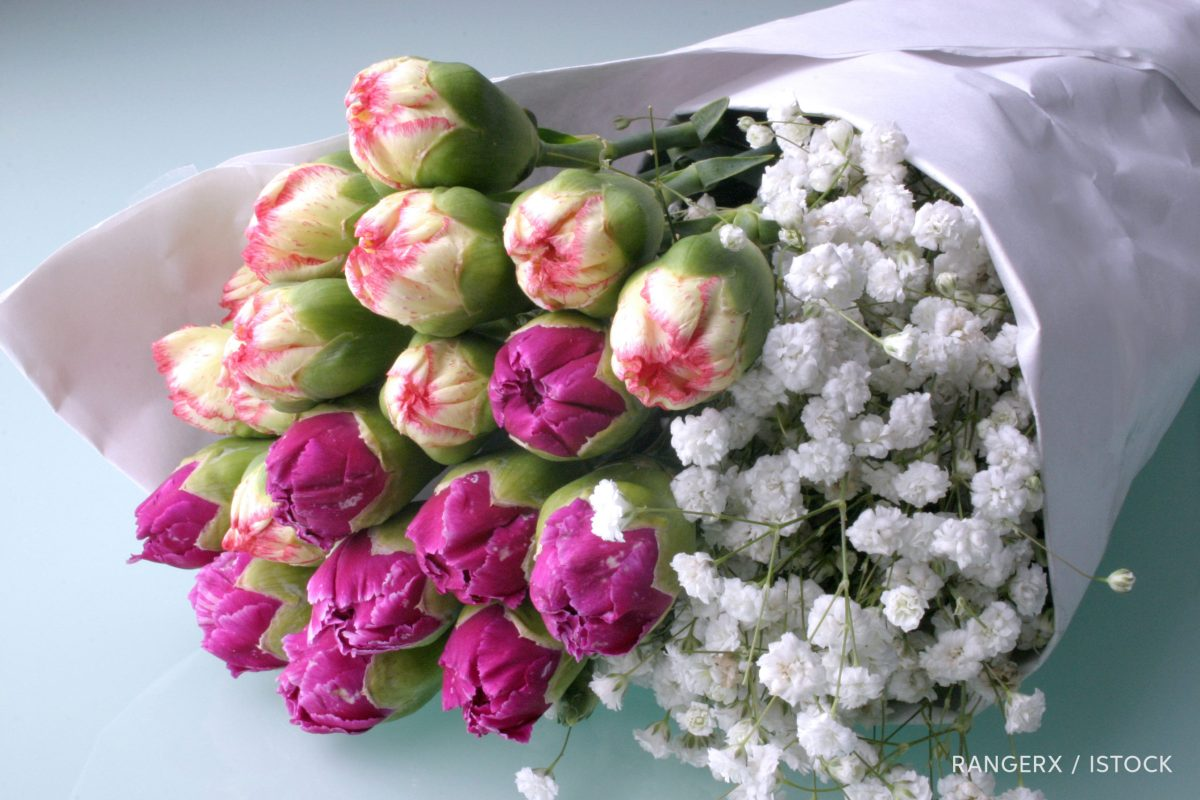 Carnations and baby's breath wrapped in paper, photo