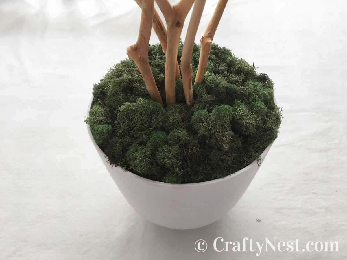 Cover the floral foam with moss, photo