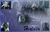 Haldir Wallpaper