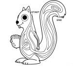 24 - Squirrel