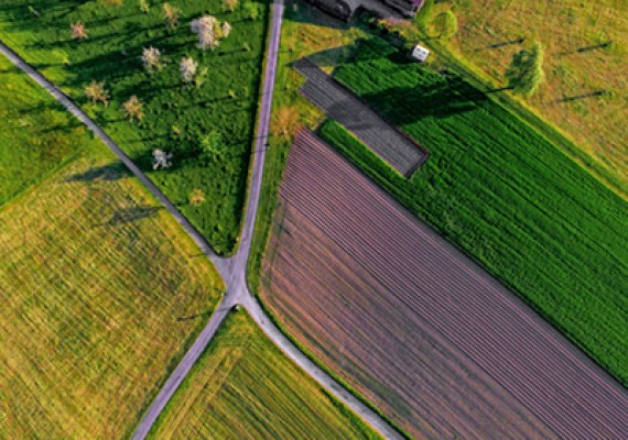 Thinking About Buying Land in Maryland?: Here's What You Need to Know
