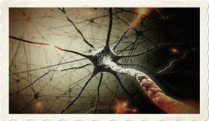 neurons12345