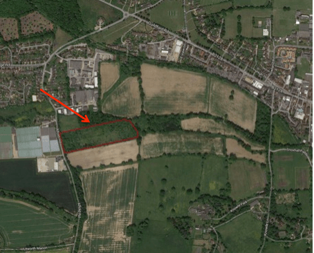 Position of Little Meadow Alfold Road planning application