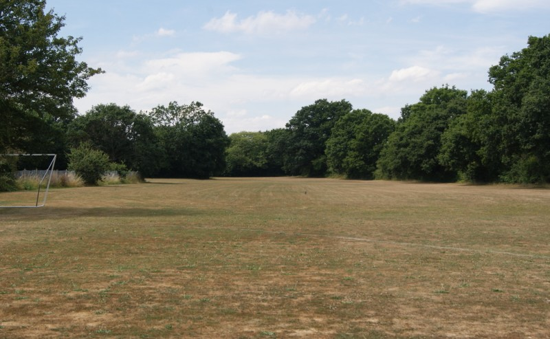 Green fields to new Primary School & sports facilities?