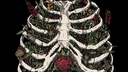 "Crannk Reviews Clowns – ""Nature/Nurture"" album"