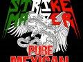 Crannk Interviews Mexican Thrashers Strike Master