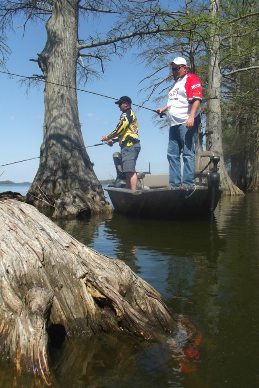 Billy tommy article crappie crazy crappie fishing for Reelfoot fishing report