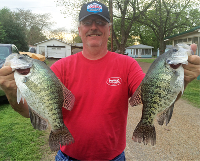 Ron reelfoot 400 crappie crazy crappie fishing for Reelfoot fishing report