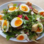 Crate Cooking Spring Seasonal Recipes panzanella salad croutons mustard lemon vinaigrette asparagus fried eggs