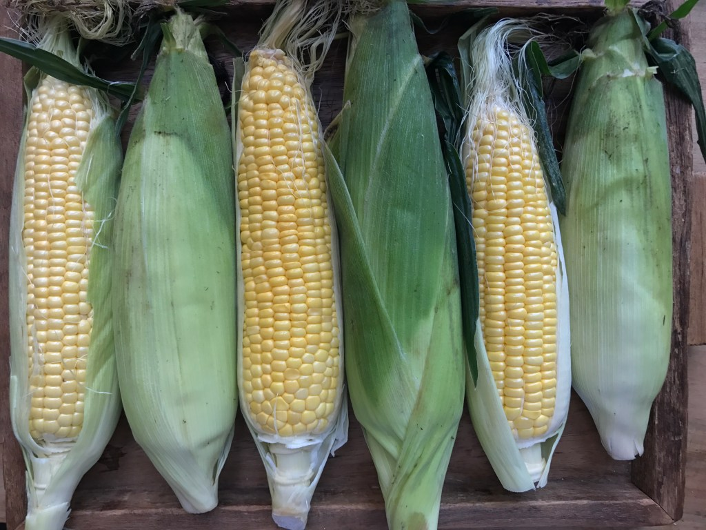 crate cooking easy simple seasonal summer recipes grilled corn