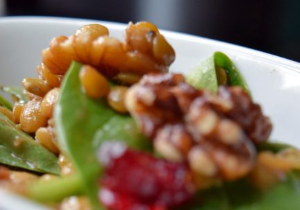 Cranberry Walnut Lentil Salad-001