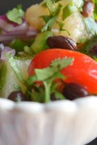 Salsa Fresca-005