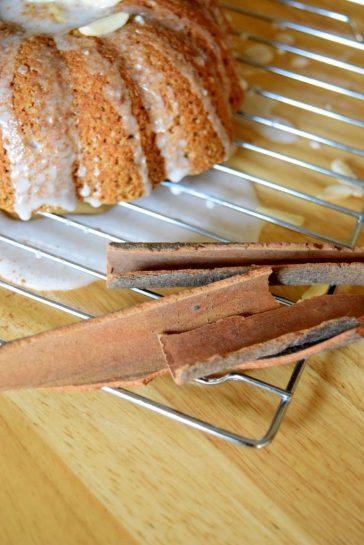 Cinnamon Roll Jackaloupe-001