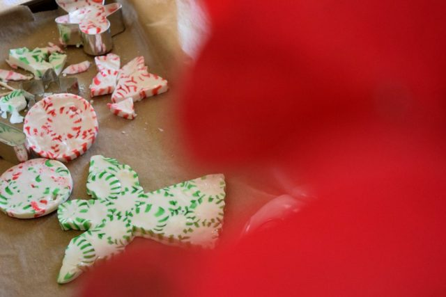 Christmas Candy Ornaments-018