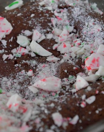 Dark Chocolate Peppermint Brownies-006