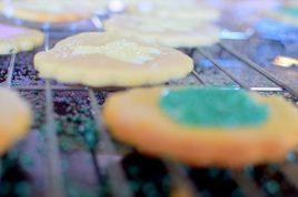 Lemon Thyme Sugar Cookies-040