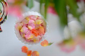 Pickled Rose Petals-004