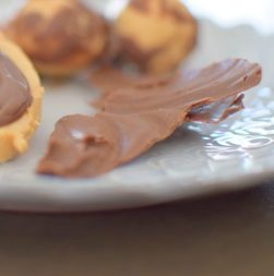 Chocolate Peanut Butter Slicks-010