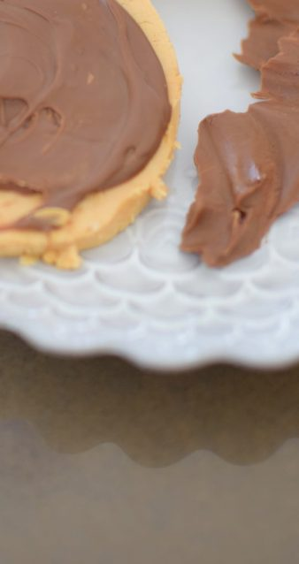 Chocolate Peanut Butter Slicks-011