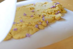 Sugared Lilac Lemon Sheet Cookies-015