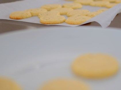 Lemon Rosemary Shortbread Cookie Coins-014