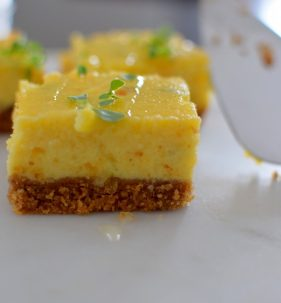 Sweet and Savory Havarti Cheesecake Bars-026