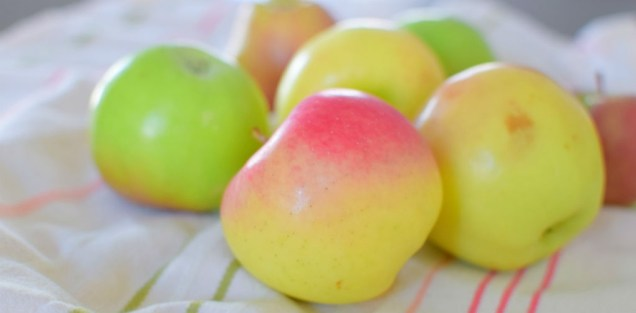 flaky-apple-pecan-tart-001