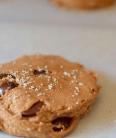 kentucky-bourbon-chocolate-chip-cookies-014