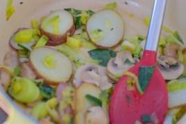 lemon-leek-mushroom-galette-003