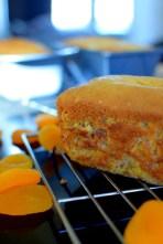 Apricot Bread-020