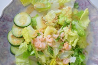 Fennel Mint Salad with Grapefruit Vinaigrette-002
