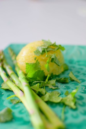 Grapefruit Cabbage Globes with Basil & Cilantro
