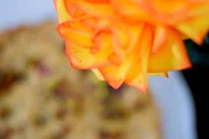 Pistachio Rose Shortbread-011