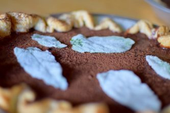 Chocolate Mint Julep Pie-022