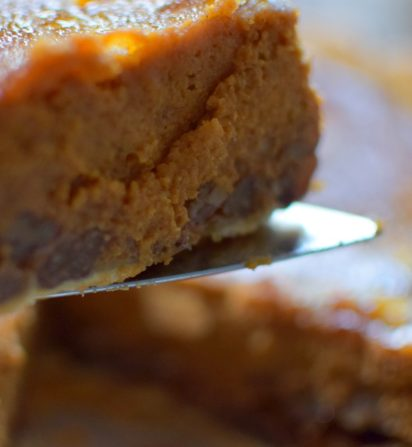 Super Spiced Sweet Pumpkin Pie-007