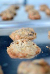 Marla's Monster Cookies-002