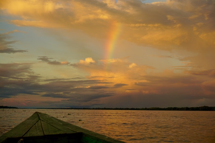 Amazon Rainforest Rainbow