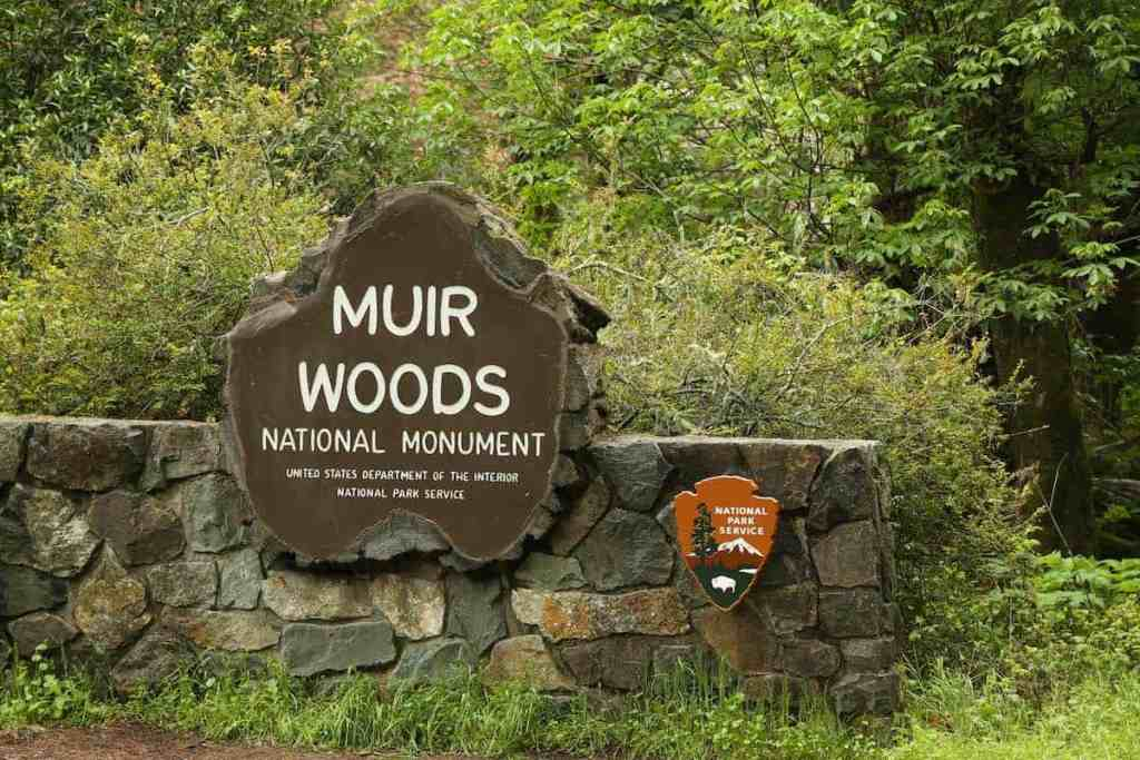 Muir Woods and Wine Country Tour