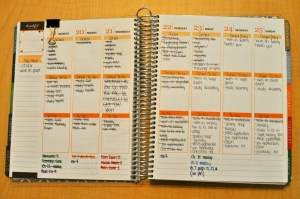 9 Tips for using your Erin Condren Life Planner