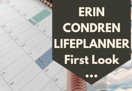 Erin Condren LifePlanner